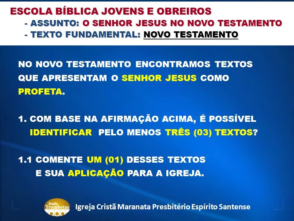 NO NOVO TESTAMENTO ENCONTRAMOS TEXTOS QUE APRESENTAM O SENHOR JESUS COMO PROFETA. 1. COM BASE NA AFIRMAÇÃO ACIMA, É POSSÍVEL IDENTIFICAR PELO MENOS TR