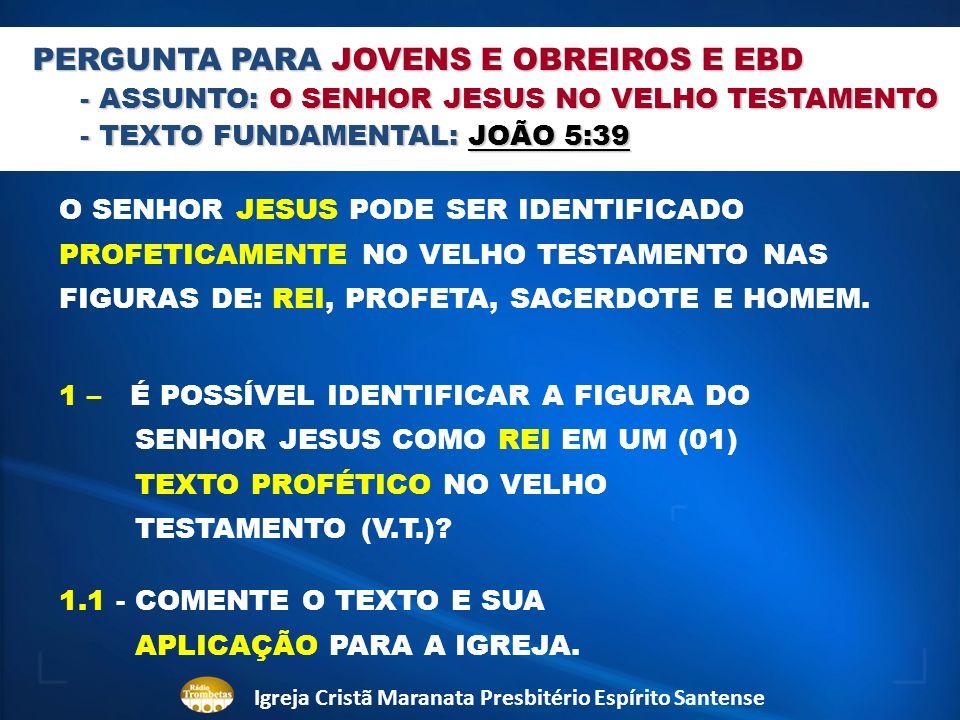 PERGUNTA PARA JOVENS E OBREIROS E EBD - ASSUNTO: O SENHOR JESUS NO VELHO TESTAMENTO - TEXTO FUNDAMENTAL: JOÃO 5:39 O SENHOR JESUS PODE SER IDENTIFICAD