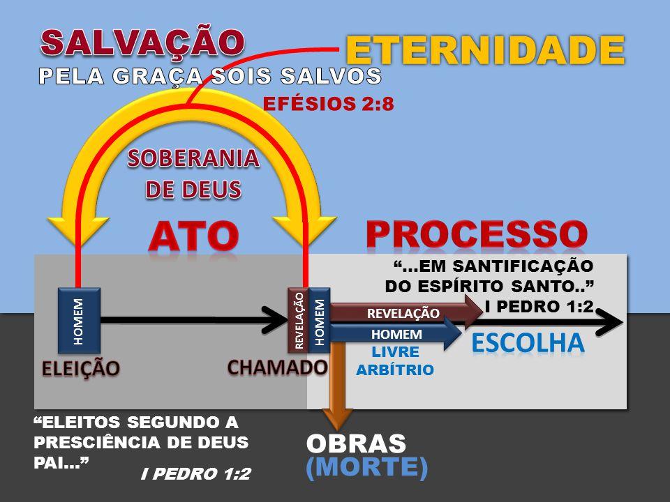 OBRAS (MORTE) ETERNIDADE HOMEM REVELAÇÃO LIVRE ARBÍTRIO REVELAÇÃO HOMEM …EM SANTIFICAÇÃO DO ESPÍRITO SANTO..