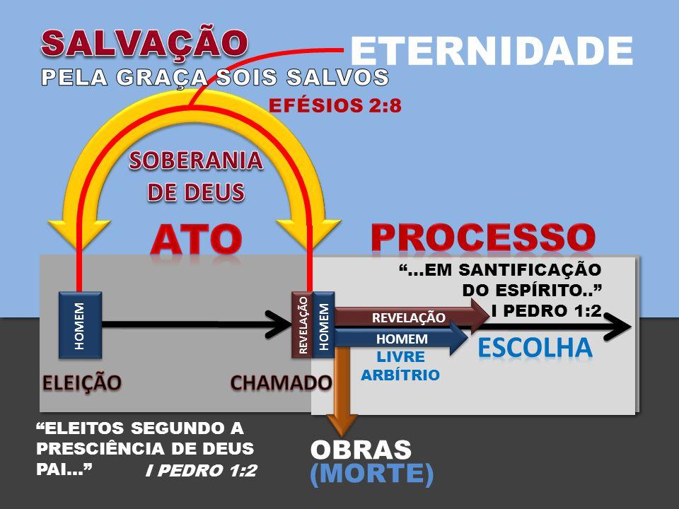 OBRAS (MORTE) ETERNIDADE HOMEM REVELAÇÃO LIVRE ARBÍTRIO REVELAÇÃO HOMEM …EM SANTIFICAÇÃO DO ESPÍRITO..
