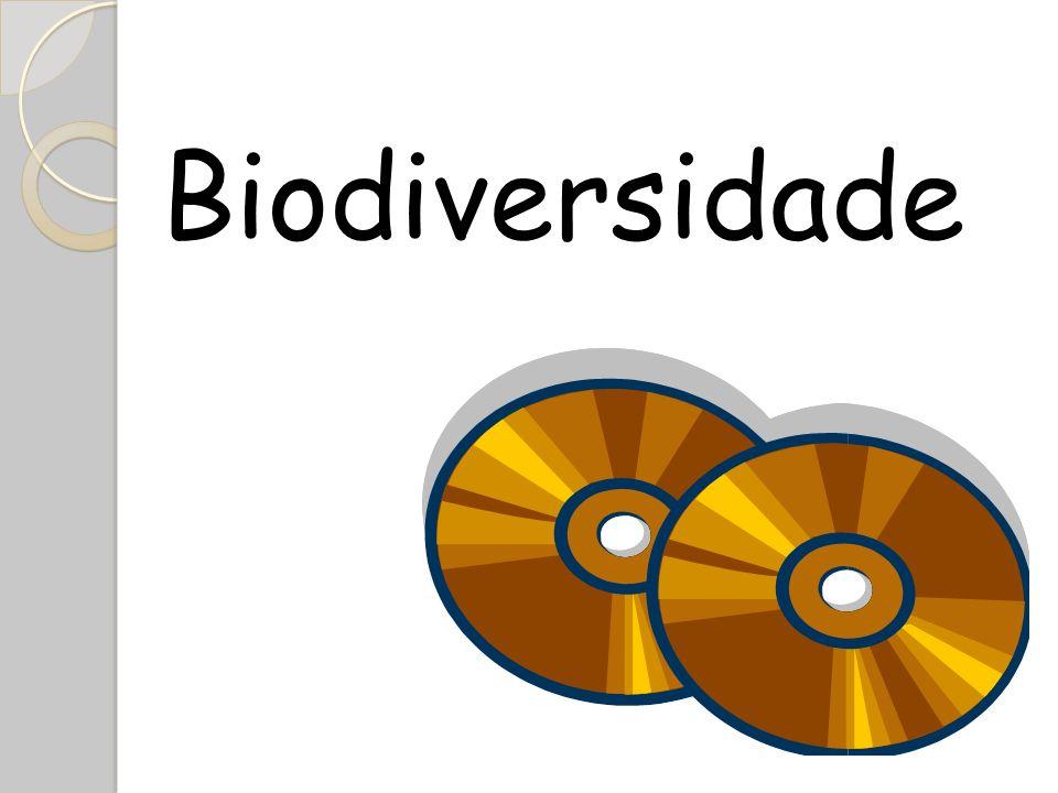 Introdução Os CDs de áudio (Compact disc) surgiram como evolução do disco de goma laca em 1870, na época ainda sob divergência entre seu inventor Émile Berliner e o tão famoso inventor Thomas Edison.