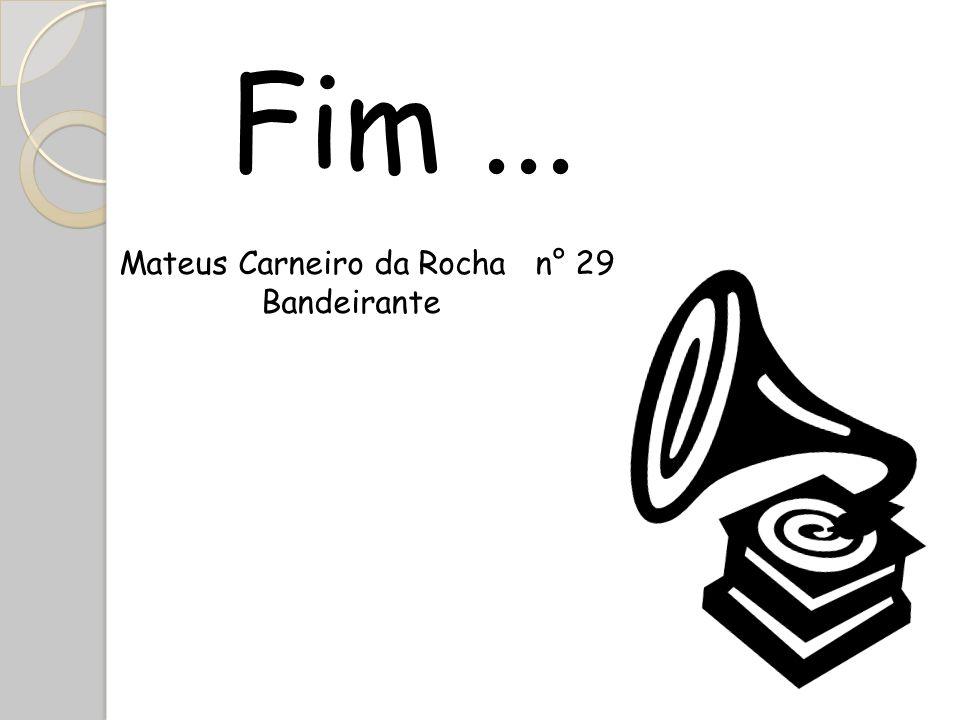 Fim... Mateus Carneiro da Rocha n° 29 Bandeirante