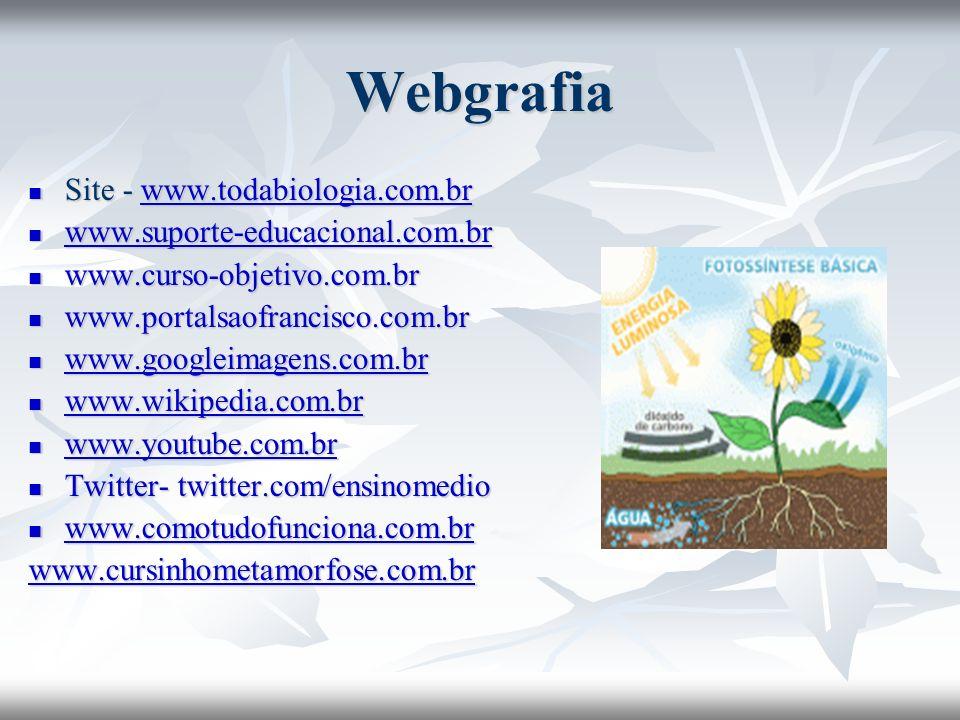 Webgrafia Site - www.todabiologia.com.br Site - www.todabiologia.com.brwww.todabiologia.com.br www.suporte-educacional.com.br www.suporte-educacional.