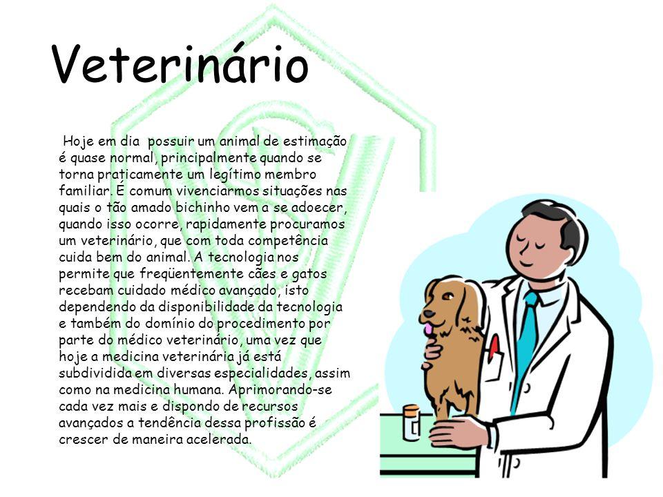 Veterinário Hoje em dia possuir um animal de estimação é quase normal, principalmente quando se torna praticamente um legítimo membro familiar. É comu