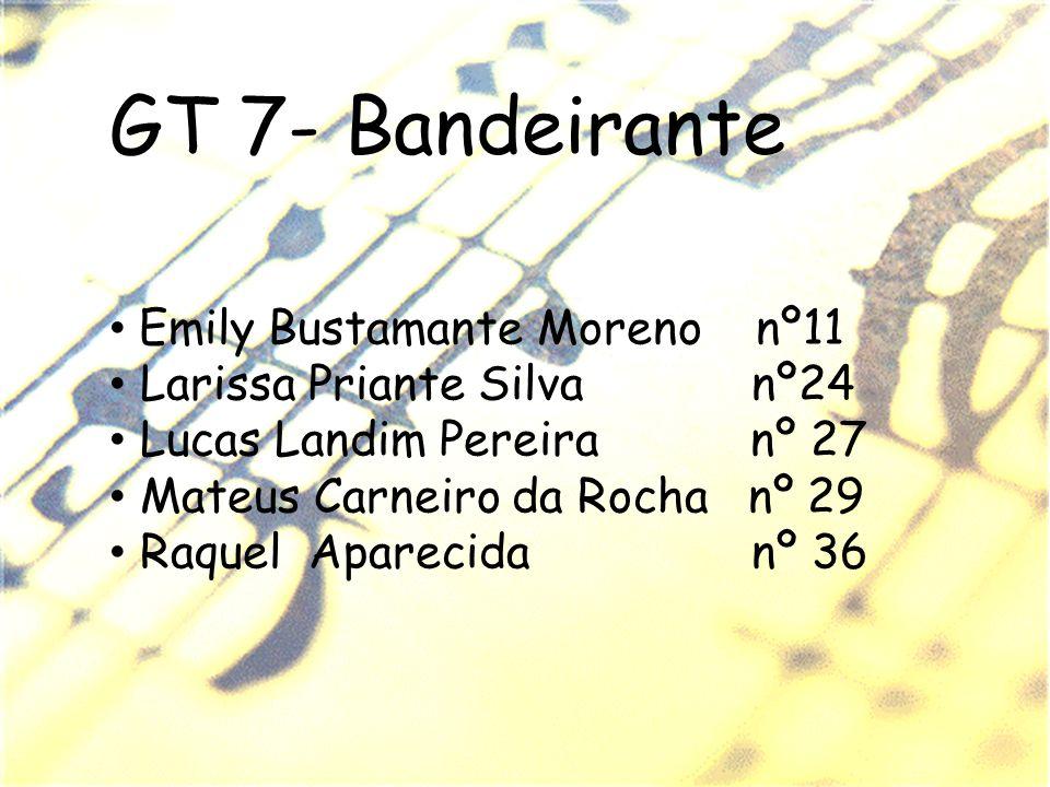 GT 7- Bandeirante Emily Bustamante Moreno nº11 Larissa Priante Silva nº24 Lucas Landim Pereira nº 27 Mateus Carneiro da Rocha nº 29 Raquel Aparecida n