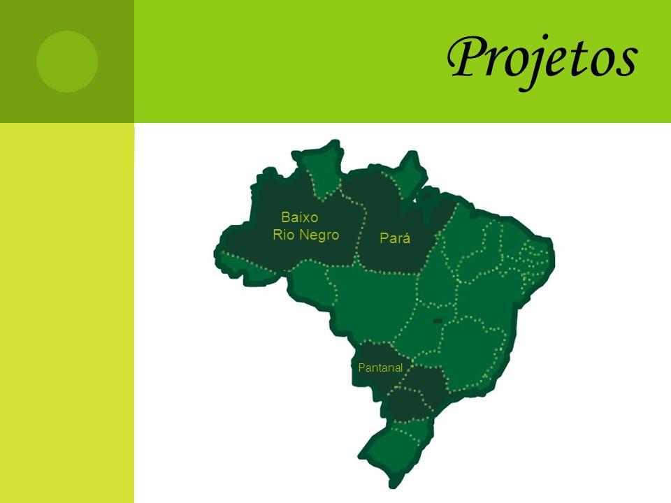 Projetos Pará Pantanal Baixo Rio Negro