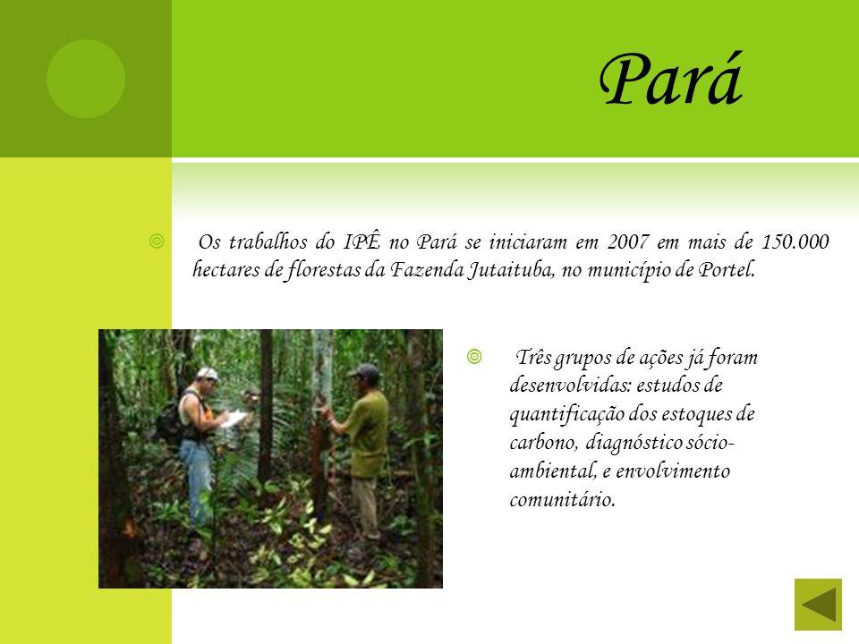 Pará Os trabalhos do IPÊ no Pará se iniciaram em 2007 em mais de 150.000 hectares de florestas da Fazenda Jutaituba, no município de Portel. Três grup