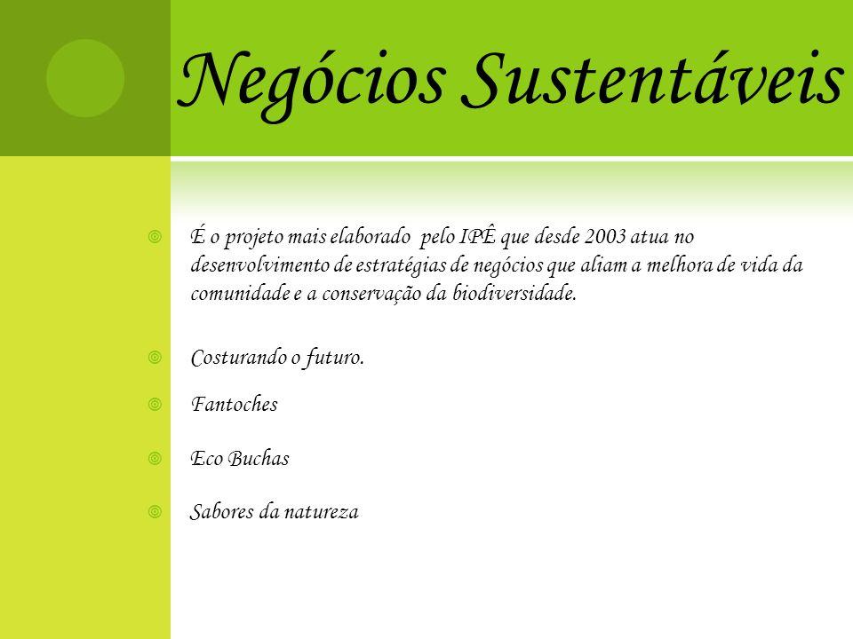 Negócios Sustentáveis É o projeto mais elaborado pelo IPÊ que desde 2003 atua no desenvolvimento de estratégias de negócios que aliam a melhora de vid