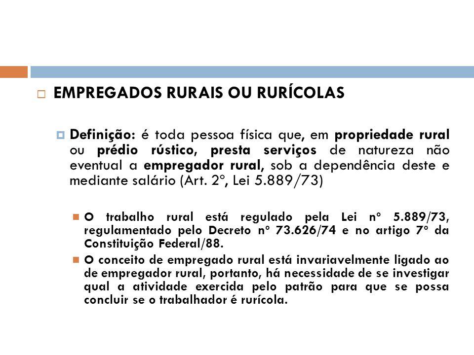 Levando-se em conta que empregador rural é aquele que explora atividade agro-econômica (art.