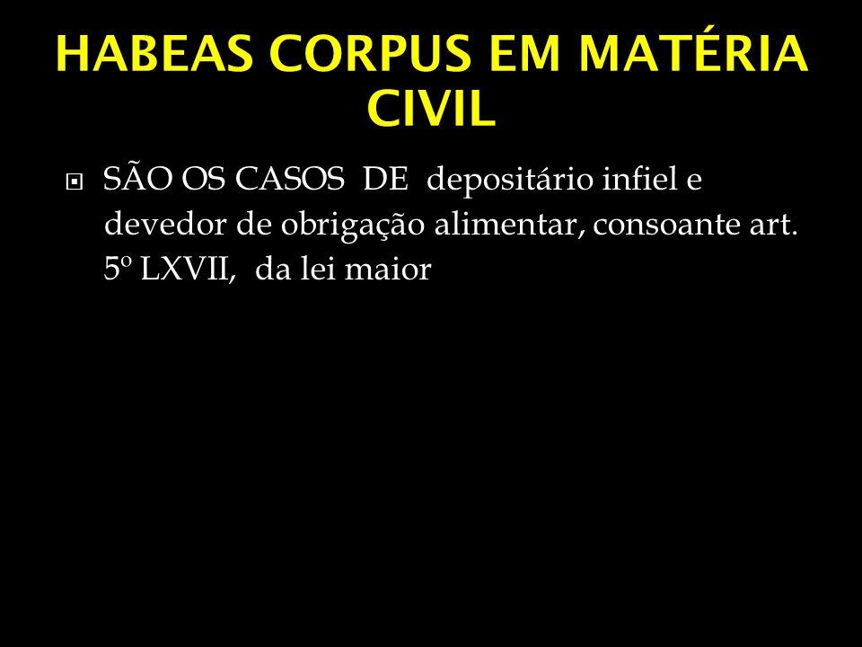HABEAS CORPUS EM MATÉRIA CIVIL SÃO OS CASOS DE depositário infiel e devedor de obrigação alimentar, consoante art. 5º LXVII, da lei maior