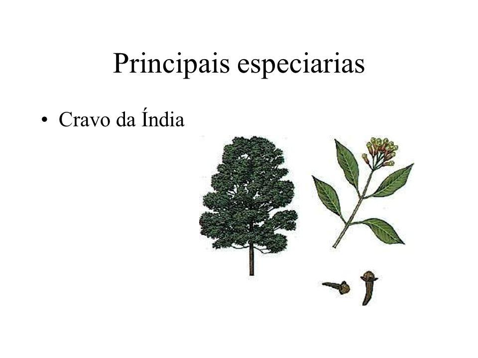Principais especiarias Pimenta do reino