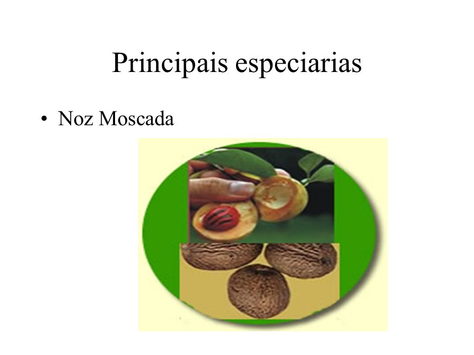 Principais especiarias Eram especiarias também o gengibre, a canela, o açúcar entre outras.