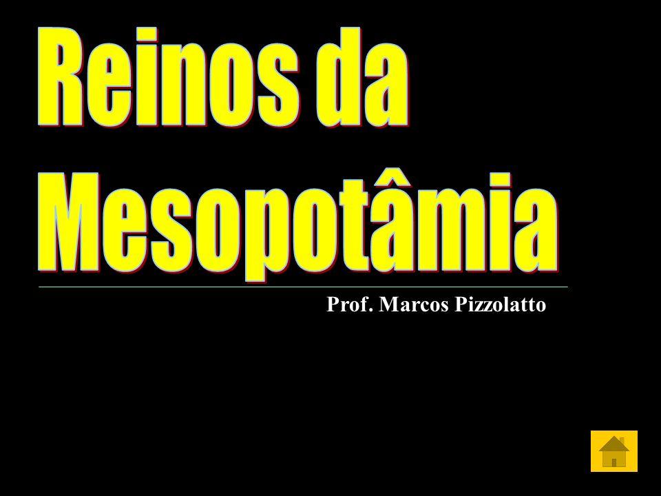 Prof. Marcos Pizzolatto
