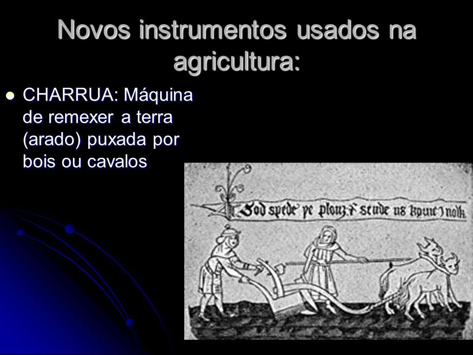 Novos instrumentos usados na agricultura: CHARRUA: Máquina de remexer a terra (arado) puxada por bois ou cavalos CHARRUA: Máquina de remexer a terra (
