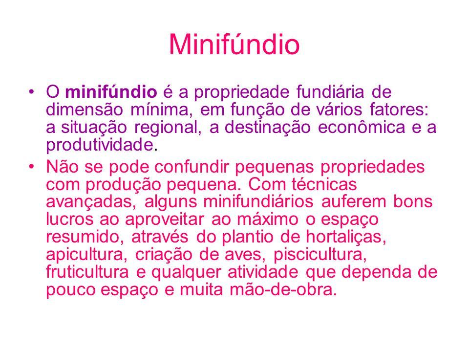 Minifúndio O minifúndio é a propriedade fundiária de dimensão mínima, em função de vários fatores: a situação regional, a destinação econômica e a pro