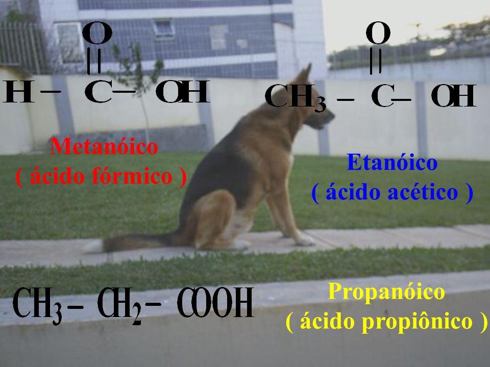 Metanóico ( ácido fórmico ) Etanóico ( ácido acético ) Propanóico ( ácido propiônico )