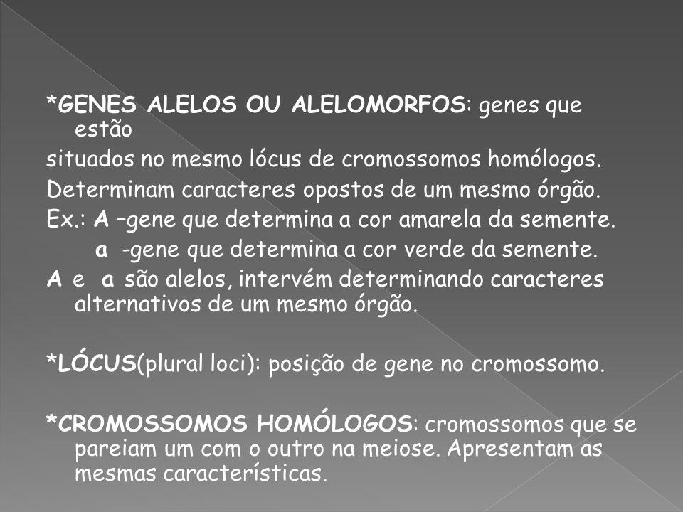 *GENES ALELOS OU ALELOMORFOS: genes que estão situados no mesmo lócus de cromossomos homólogos. Determinam caracteres opostos de um mesmo órgão. Ex.:
