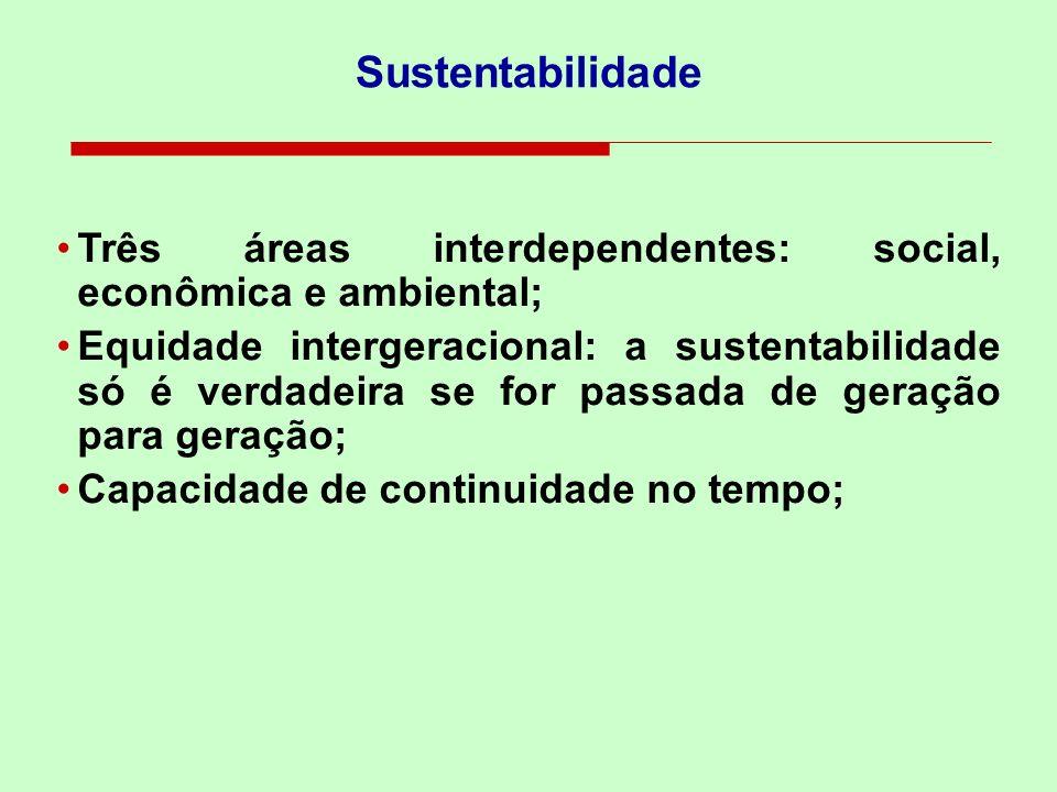 Sustentabilidade Três áreas interdependentes: social, econômica e ambiental; Equidade intergeracional: a sustentabilidade só é verdadeira se for passa