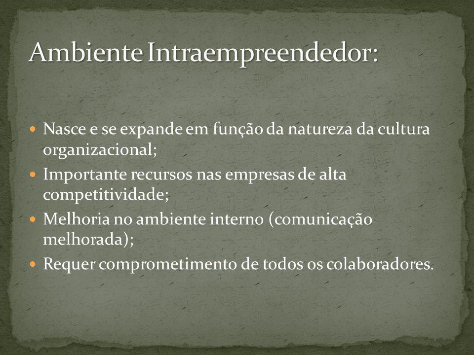 Nasce e se expande em função da natureza da cultura organizacional; Importante recursos nas empresas de alta competitividade; Melhoria no ambiente int