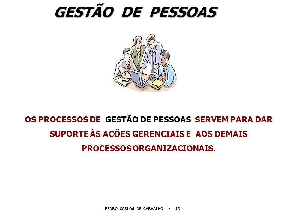 GESTÃO DE PESSOAS OS PROCESSOS DE GESTÃO DE PESSOAS SERVEM PARA DAR SUPORTE ÀS AÇÕES GERENCIAIS E AOS DEMAIS PROCESSOS ORGANIZACIONAIS. PEDRO CARLOS D