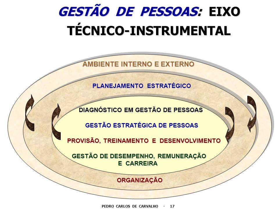 GESTÃO DE PESSOAS: EIXO TÉCNICO-INSTRUMENTAL AMBIENTE INTERNO E EXTERNO PLANEJAMENTO ESTRATÉGICO ORGANIZAÇÃO GESTÃO ESTRATÉGICA DE PESSOAS DIAGNÓSTICO