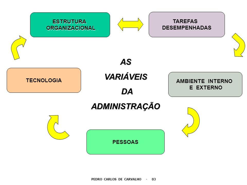 PEDRO CARLOS DE CARVALHO - 03 ESTRUTURA ORGANIZACIONAL ORGANIZACIONAL TECNOLOGIA TAREFAS DESEMPENHADAS PESSOAS AMBIENTE INTERNO E EXTERNO ASVARIÁVEIS