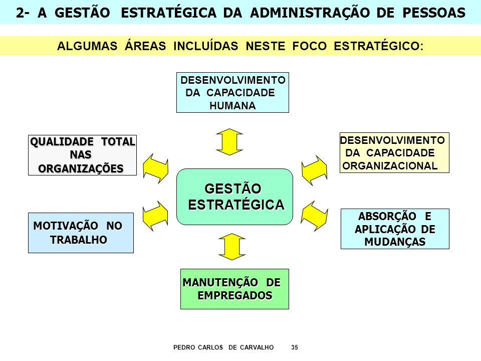 2- A GESTÃO ESTRATÉGICA DA ADMINISTRAÇÃO DE PESSOAS PEDRO CARLOS DE CARVALHO 35 DESENVOLVIMENTO DA CAPACIDADE ORGANIZACIONAL ABSORÇÃO E APLICAÇÃO DE M