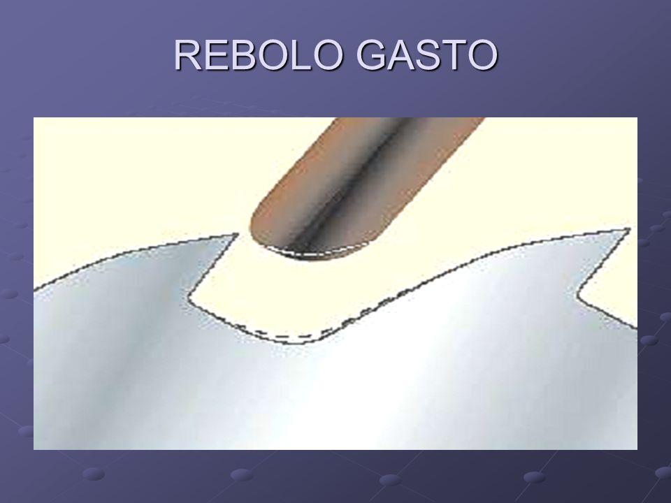 REBOLO GASTO