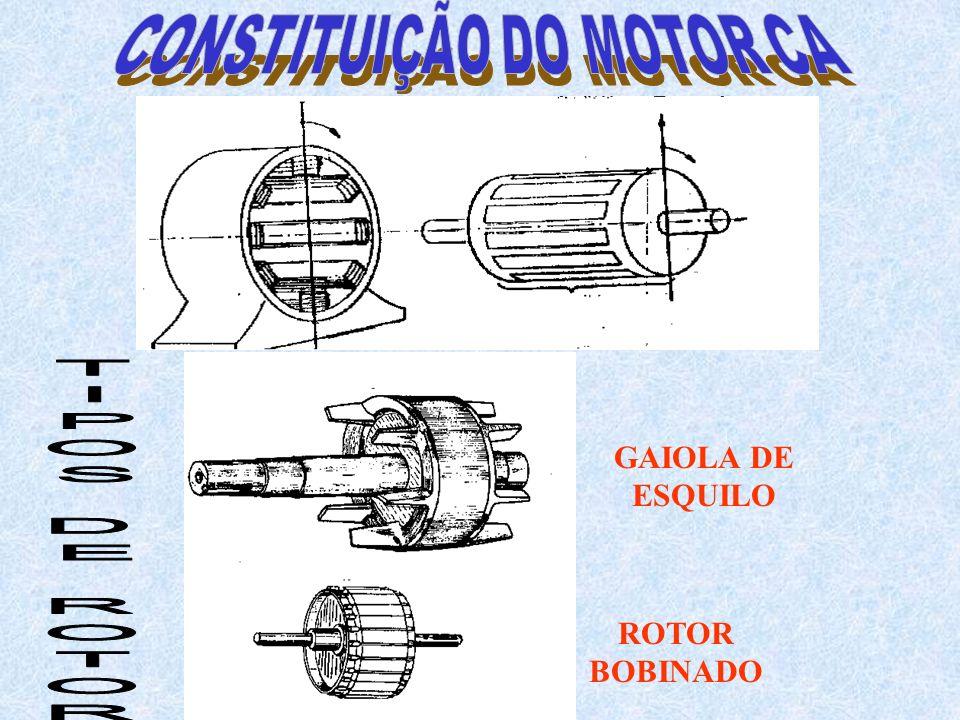 GAIOLA DE ESQUILO ROTOR BOBINADO