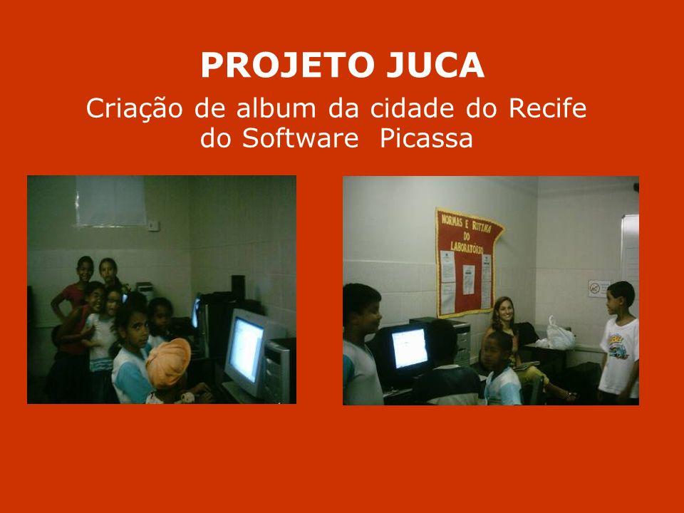 PROJETO JUCA Criação de album da cidade do Recife do Software Picassa