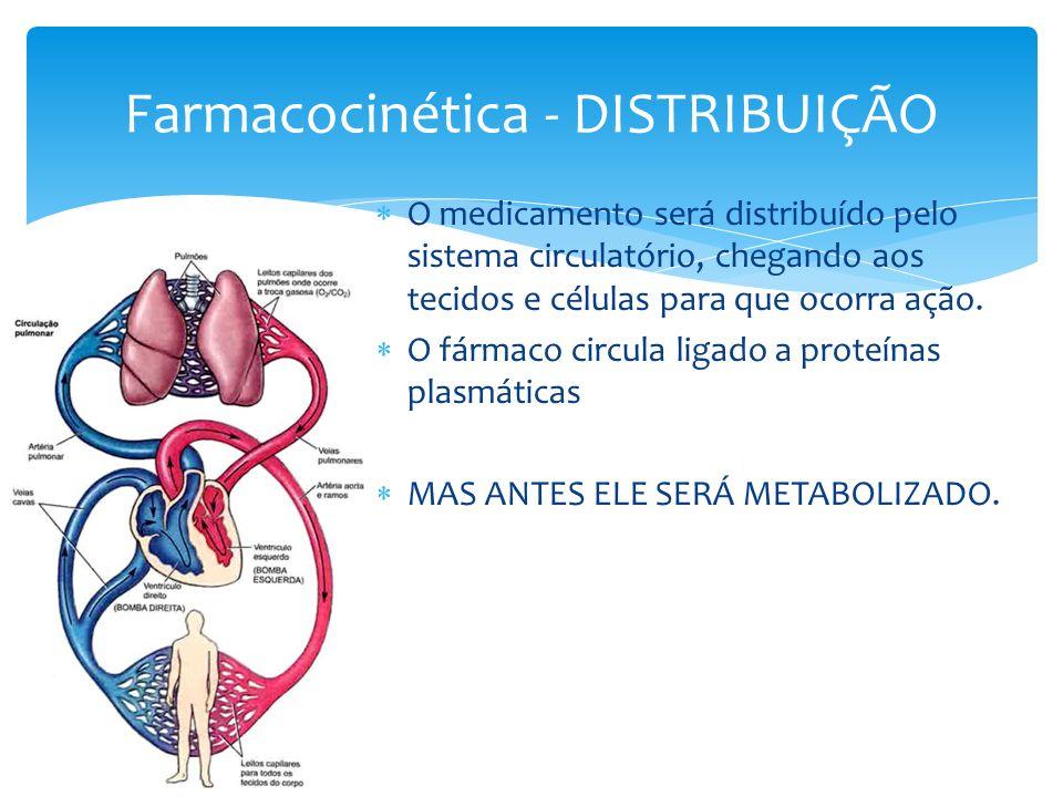 O medicamento será distribuído pelo sistema circulatório, chegando aos tecidos e células para que ocorra ação. O fármaco circula ligado a proteínas pl