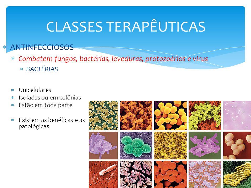 CLASSES TERAPÊUTICAS ANTINFECCIOSOS Combatem fungos, bactérias, leveduras, protozoários e virus BACTÉRIAS Unicelulares Isoladas ou em colônias Estão e