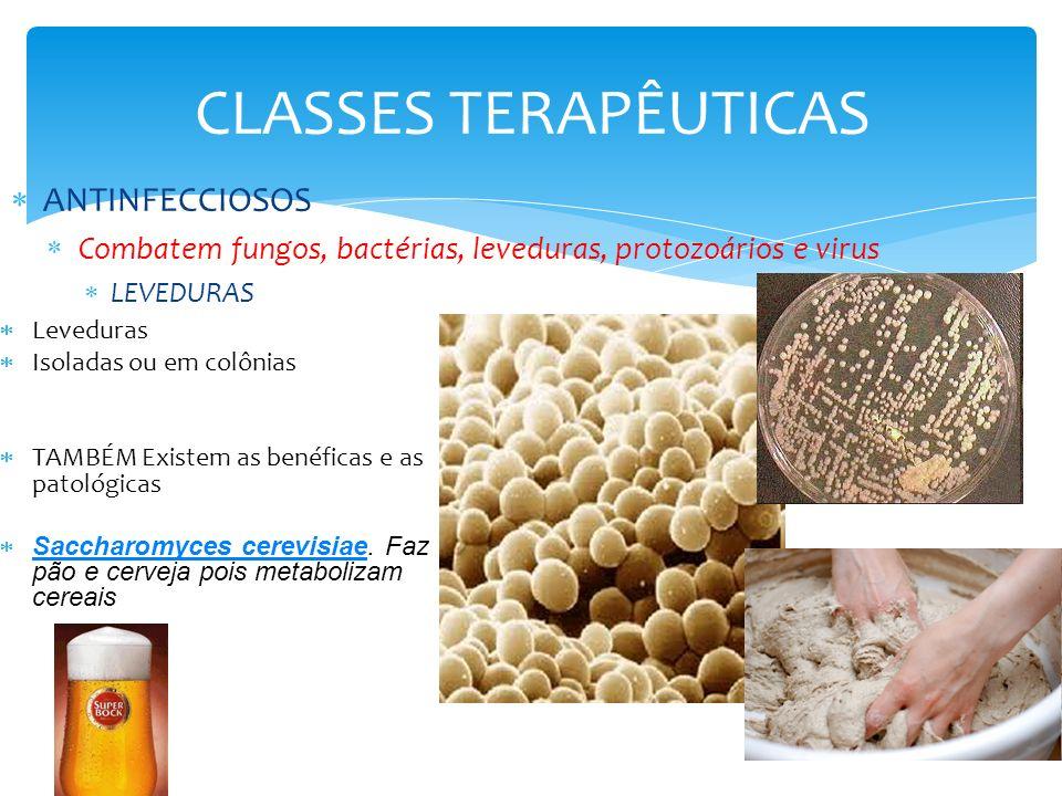 CLASSES TERAPÊUTICAS ANTINFECCIOSOS Combatem fungos, bactérias, leveduras, protozoários e virus FUNGOS Fungos Isoladas ou em colônias TAMBÉM Existem as benéficas e as patológicas Saccharomyces cerevisiae.