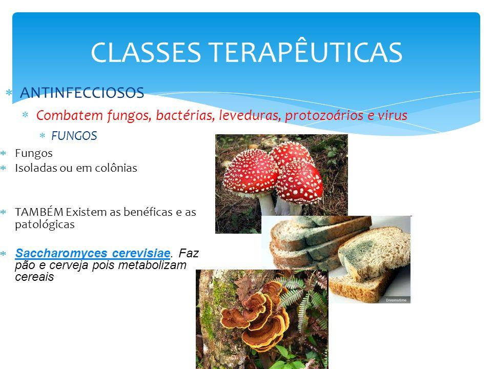 CLASSES TERAPÊUTICAS ANTINFECCIOSOS Combatem fungos, bactérias, leveduras, protozoários e virus FUNGOS Fungos Isoladas ou em colônias TAMBÉM Existem a