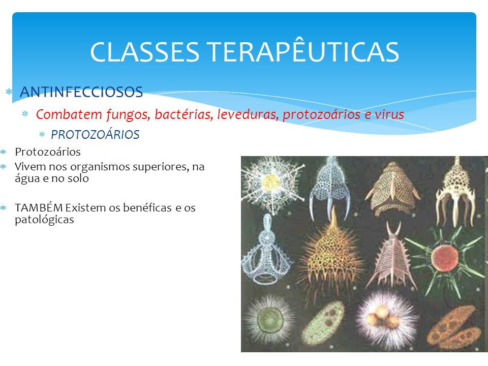 CLASSES TERAPÊUTICAS ANTINFECCIOSOS Combatem fungos, bactérias, leveduras, protozoários e virus PROTOZOÁRIOS Protozoários Vivem nos organismos superio