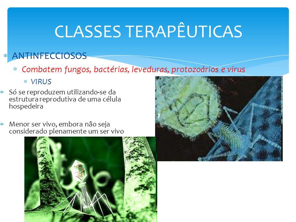 CLASSES TERAPÊUTICAS ANTIINFECCIOSOS ANTISÉPTICOS Alcool, formaldeído, clorexedina, hipoclorito de sódio, Iodopovidona, Iodo, Tiomersal, Permanganato de potássio, Peróxido de hidrogênio, Nitrato de Prata, Óxido de zinco, Sulfato de Zinco ANTIPROTOZOÁRIOS ANTI-HELMINTICOS ANTIFÚNGICOS SULFONAMIDAS QUIMIOTERÁPICOS DO TRATO URINÁRIO QUIMIOTERÁPICOS ANTIVIRAIS