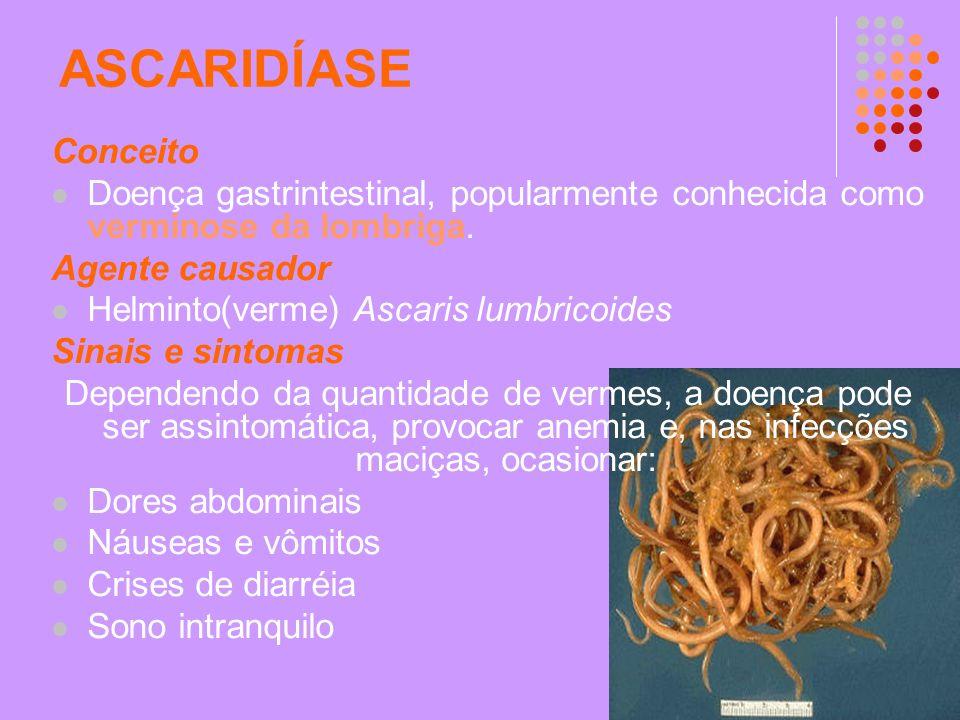 ASCARIDÍASE Conceito Doença gastrintestinal, popularmente conhecida como verminose da lombriga. Agente causador Helminto(verme) Ascaris lumbricoides S