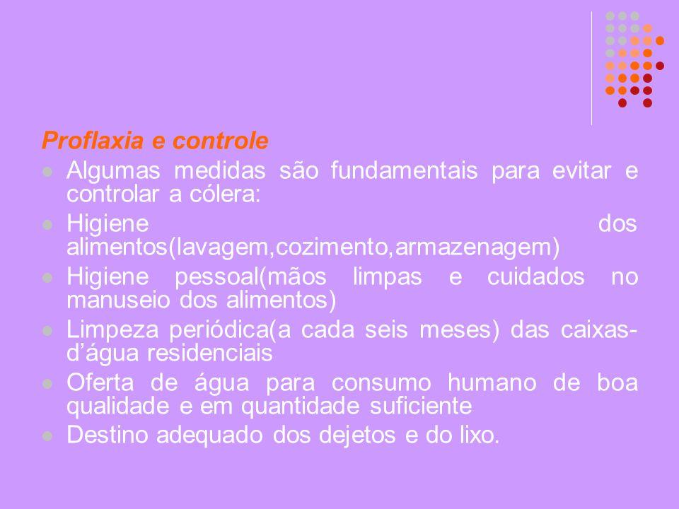 Proflaxia e controle Algumas medidas são fundamentais para evitar e controlar a cólera: Higiene dos alimentos(lavagem,cozimento,armazenagem) Higiene p