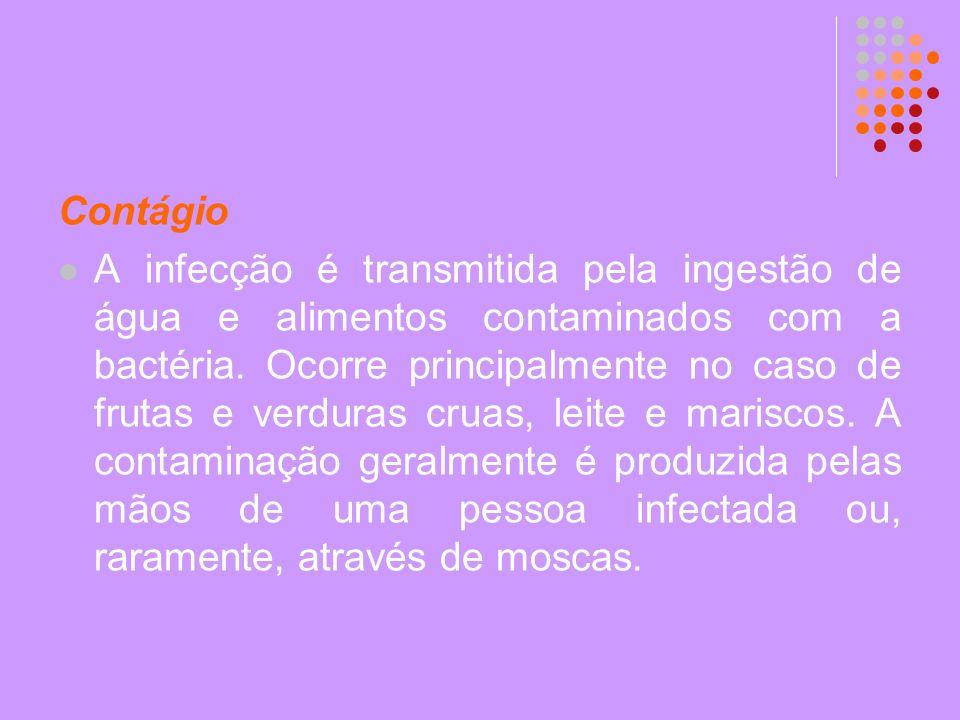 Contágio A infecção é transmitida pela ingestão de água e alimentos contaminados com a bactéria. Ocorre principalmente no caso de frutas e verduras cr