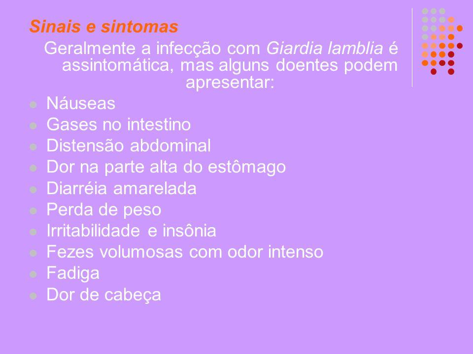 Sinais e sintomas Geralmente a infecção com Giardia lamblia é assintomática, mas alguns doentes podem apresentar: Náuseas Gases no intestino Distensão