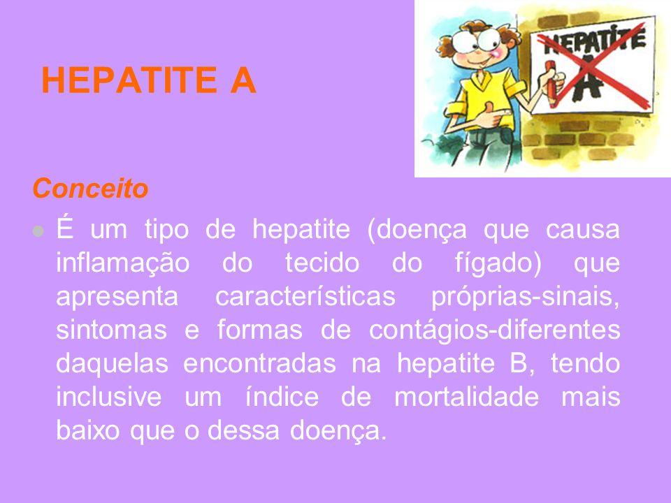 HEPATITE A Conceito É um tipo de hepatite (doença que causa inflamação do tecido do fígado) que apresenta características próprias-sinais, sintomas e