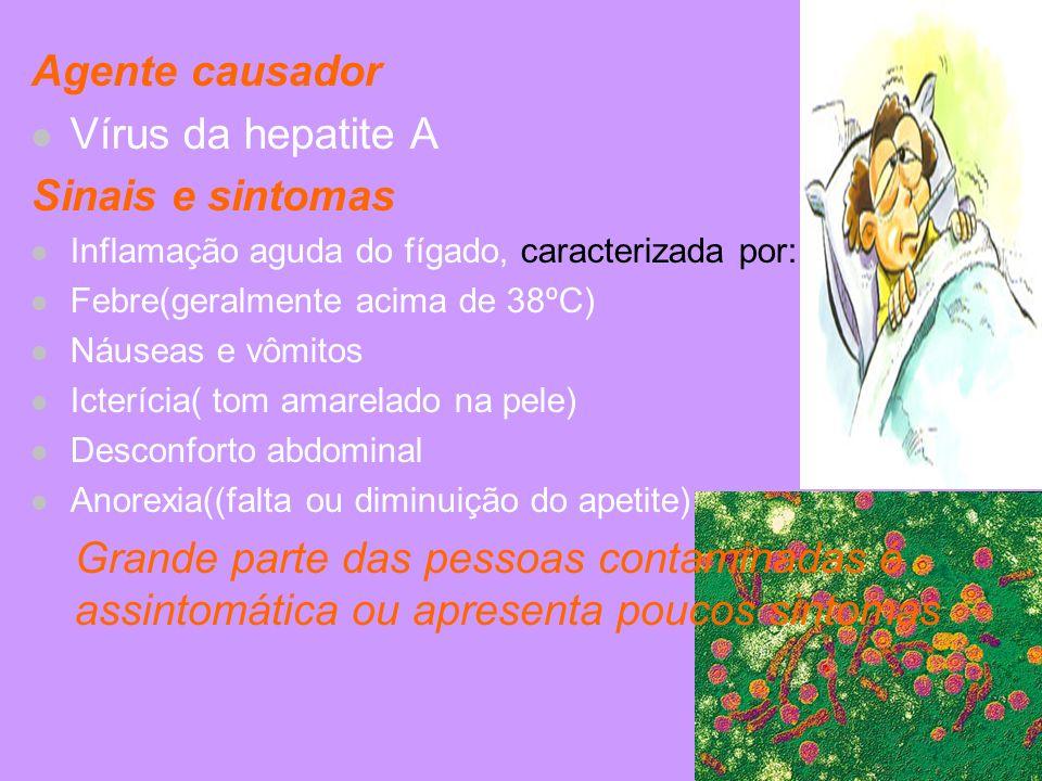 Agente causador Vírus da hepatite A Sinais e sintomas Inflamação aguda do fígado, caracterizada por: Febre(geralmente acima de 38ºC) Náuseas e vômitos