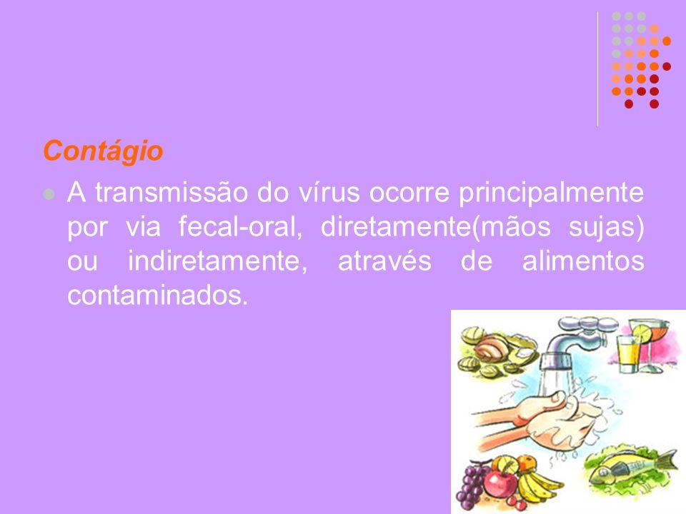 Contágio A transmissão do vírus ocorre principalmente por via fecal-oral, diretamente(mãos sujas) ou indiretamente, através de alimentos contaminados.