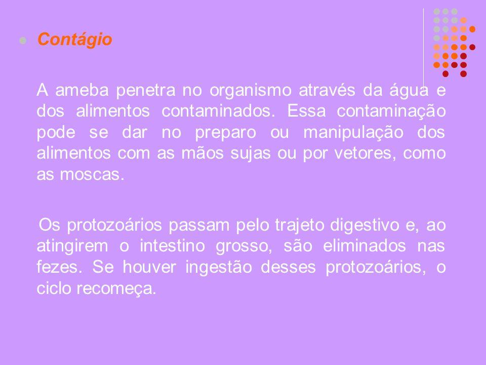 Contágio A ameba penetra no organismo através da água e dos alimentos contaminados. Essa contaminação pode se dar no preparo ou manipulação dos alimen