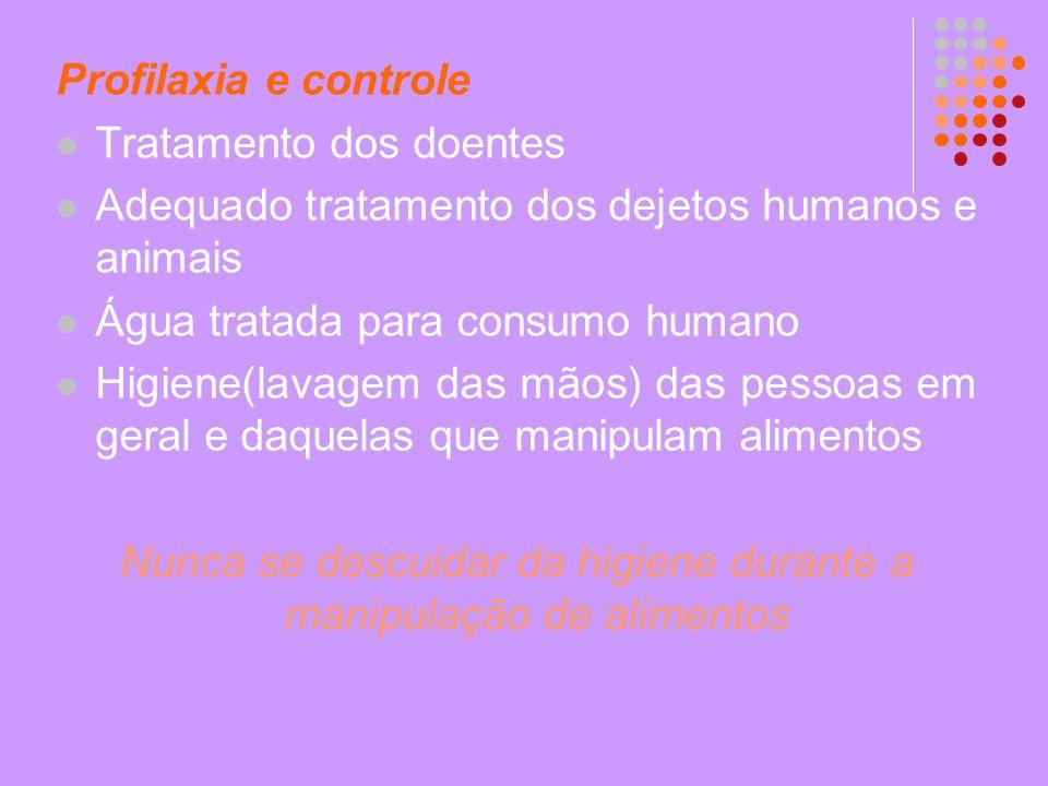 Profilaxia e controle Tratamento dos doentes Adequado tratamento dos dejetos humanos e animais Água tratada para consumo humano Higiene(lavagem das mã