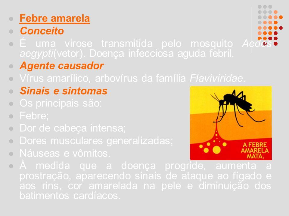 Febre amarela Conceito É uma virose transmitida pelo mosquito Aedes aegypti(vetor). Doença infecciosa aguda febril. Agente causador Vírus amarílico, a