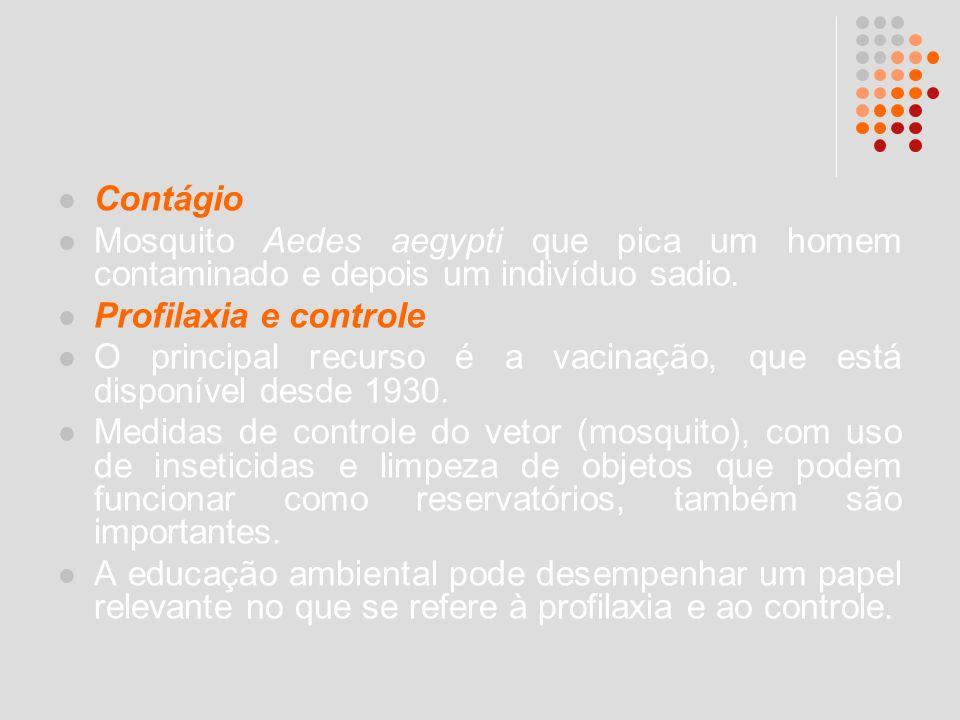 Contágio Mosquito Aedes aegypti que pica um homem contaminado e depois um indivíduo sadio. Profilaxia e controle O principal recurso é a vacinação, qu