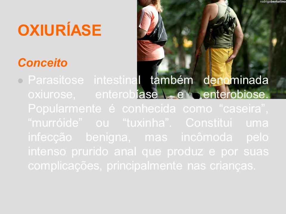 OXIURÍASE Conceito Parasitose intestinal também denominada oxiurose, enterobíase e enterobiose. Popularmente é conhecida como caseira, murróide ou tux