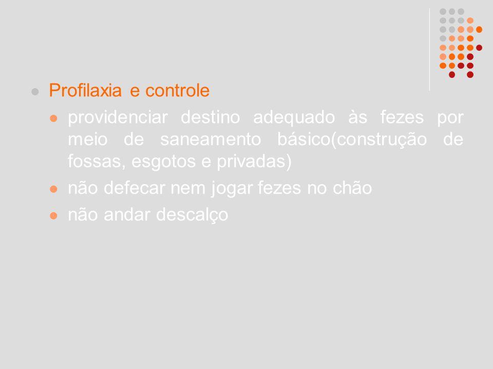 Profilaxia e controle providenciar destino adequado às fezes por meio de saneamento básico(construção de fossas, esgotos e privadas) não defecar nem j