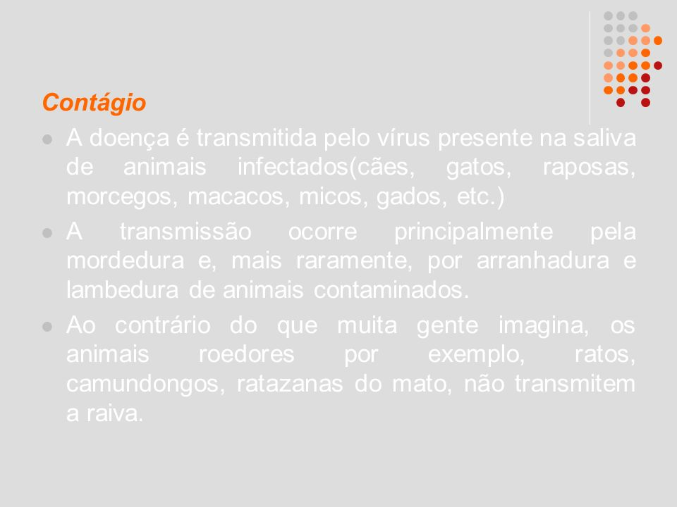 Contágio A doença é transmitida pelo vírus presente na saliva de animais infectados(cães, gatos, raposas, morcegos, macacos, micos, gados, etc.) A tra